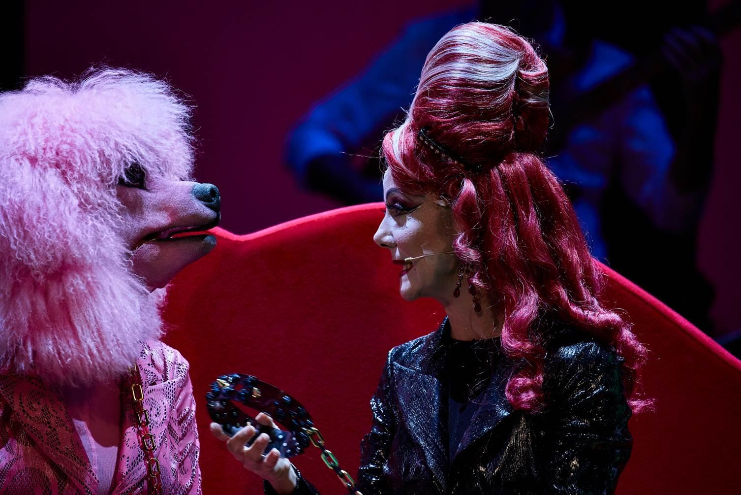madame-pink-foto-giovanni-ambrosio-7